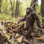 Эволюция человека, или как стать инвестором